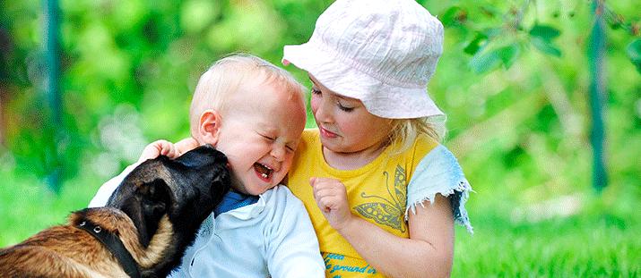 Vaccin mot pälsdjursallergi